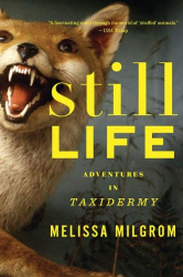 Melissa Milgrom: Still Life: Adventures in Taxidermy