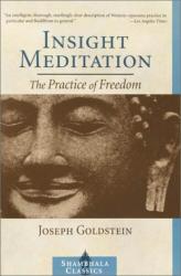 Joseph Goldstein: Insight Meditation: The Practice of Freedom