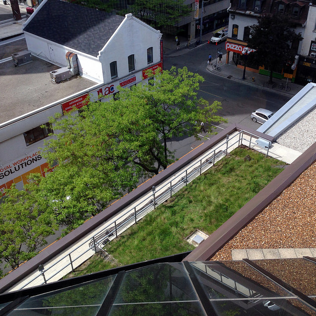 Green Roof Toronto Reference Library looking down to Yonge and Asquith from Flickr by B. Cehan