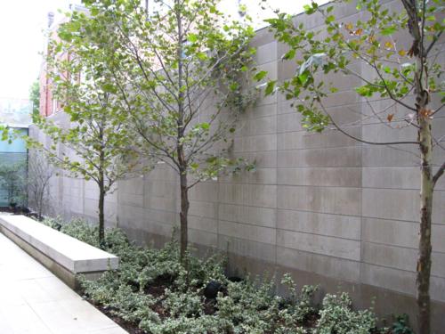 Bloor Gladstone Branch Toronto Public Library reading garden Reason #70 exterior photo of courtyard