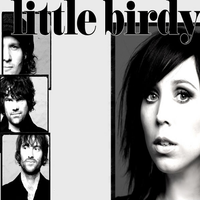 Little Birdy - Brother