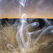 Cerebral Paul - The Spirit of Things