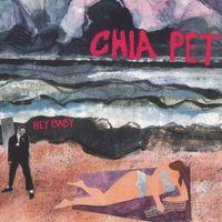 Chia Pet - Hey Baby