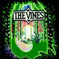 09-The Vines-Ain't No Room