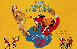 Estudios de caso del interDocsBarcelona: 'Sexo, maracas y chihuahuas'
