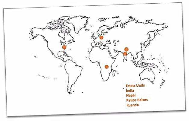 Algunos proyectos con iniciativas y actividades a nivel internacional