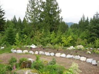 Planting - 2008