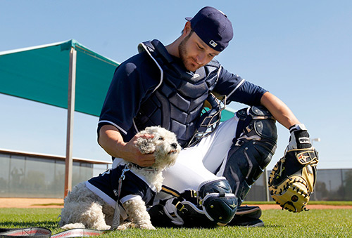 Blog-milwaukee-brewers-dog-hank-500w