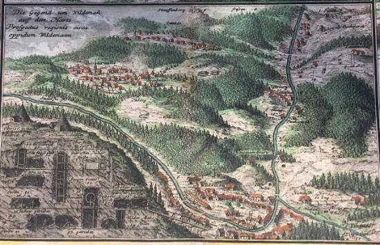 Harz Wildemann map