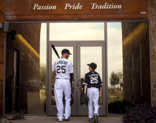 Chi-adam-laroche-white-sox-photos-018