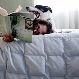 Dog and girl reading in bed