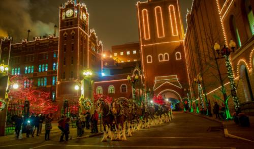 Anheuser-Busch Holiday Lights