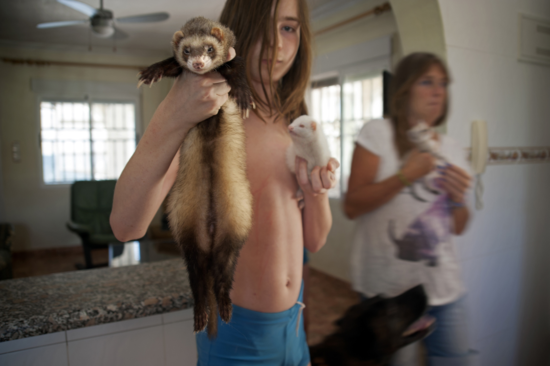 Pets in Spain - Pascalle's Son Web