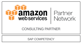 SAP_Consulting_Partner