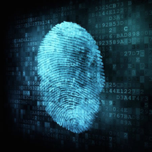 Data_fingerprint_sqaure