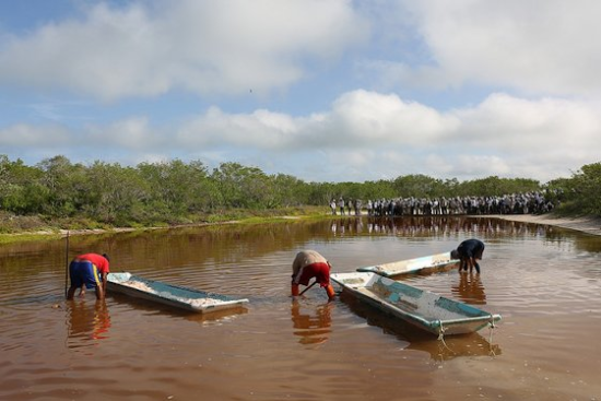 Charca salinera en la reserva de la biosfera Ría Celestún.