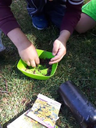 Making Seed Balls!, Photo credit Janelle Richards